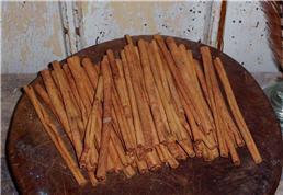 "6"" Inch Cinnamon Sticks-"