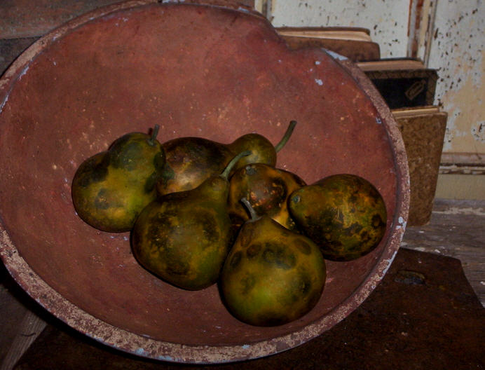 Pear Gourds - Speckled Olive set/6-
