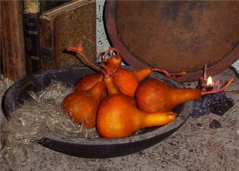 Cone Gourd - Pumpkin Set/12-pumpkin, gourd, fall, Halloween, dried