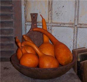 Dipper Gourd - Pumpkin Large-