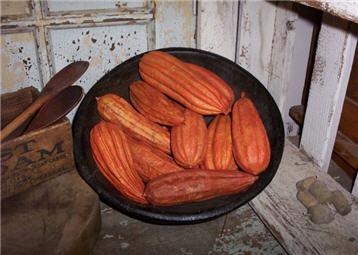 Jhinga Pods - Orange-orange, jhinga, cinnamon, pumpkin, spice, pods