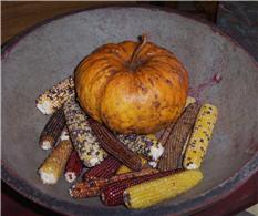 Pumpkin Gourds - Knubby-pumpkin, gourd