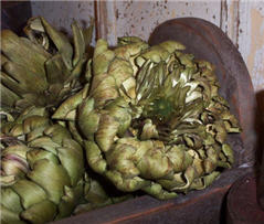Artichokes - Dried Jumbo