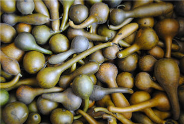 Olive Dippers - Small Mixed Olives-