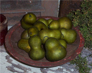 Pear Gourds - Olive - Asst. Sizes