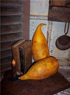 Papaya Gourds - Extra Large Autumn Gold-