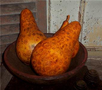 Papaya Gourd - Pumpkin-