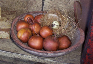 Brick Apple Gourds - Small-apple, brick, red, dried