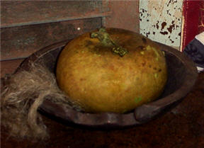 Pumpkin Gourds -  Green-