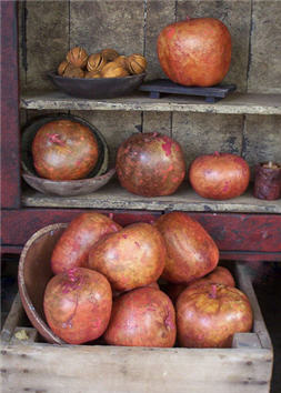 Large Brick Red Apple Gourds
