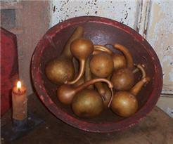 Dipper Gourds - Auburn Brown